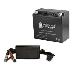 YTX20L-BS SLA Replaces Ski-Doo 550 Freestyle 05-12 + 12V 4Amp Charger – Mighty Max Battery ...