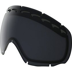 Oakley Men's Crowbar Snow Goggle Replacement Lens, Dark Grey, Dark Grey, Medium