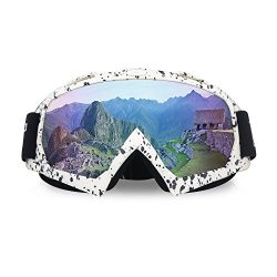 ThyWay Dustproof Outdoor Goggles for Motocross / Bike Riding Wind Skiing Winter Sports (White 2)