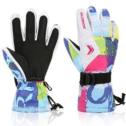 Ski Gloves,RunRRIn Winter Warmest Waterproof and Breathable Snow Gloves for Mens,Womens,ladies a ...