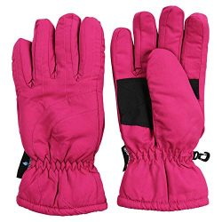 Women's Insulated Waterproof Microfiber Winter Snow Ski Gloves (Pink, Medium)